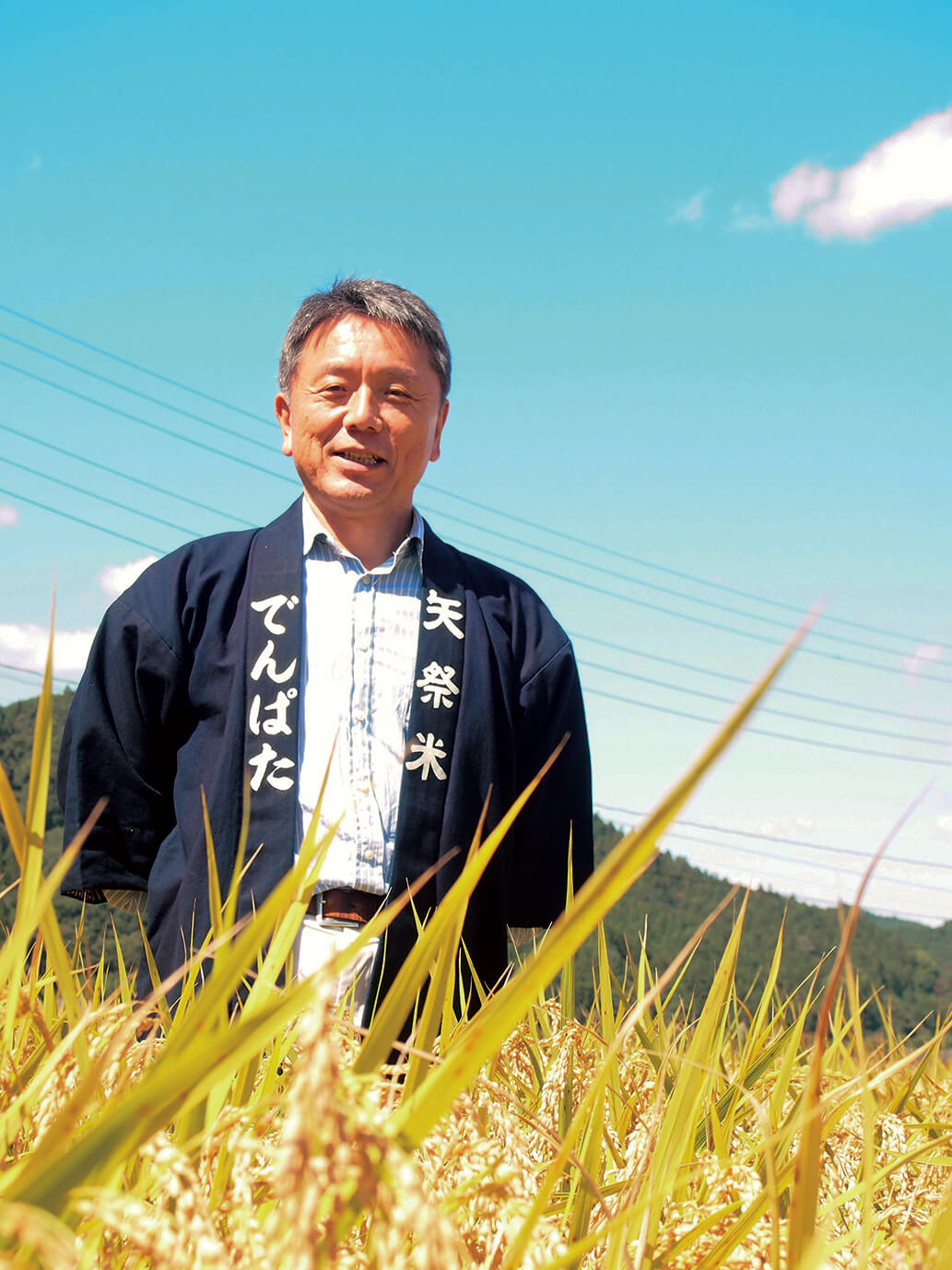 福島のいちばん南 矢祭で育てたコシヒカリ
